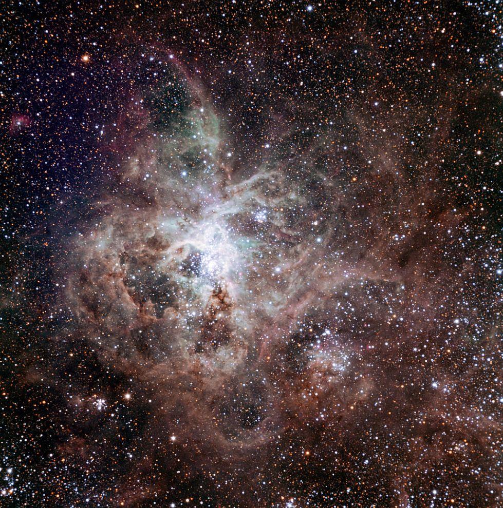 1024px-Tarantula_Nebula_TRAPPIST
