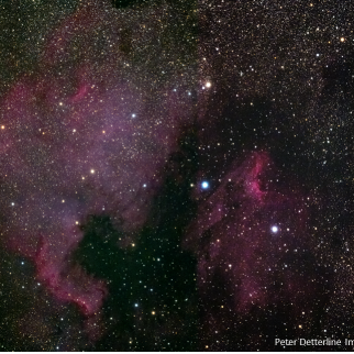 N American and Pelican Nebula